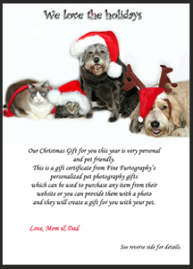South Florida Pet Photography Gift Certificate - FineFurtography.com