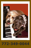 Pet Photograph Portrait of Two Dogs Playing Piano - FineFurtography.com in South Florida